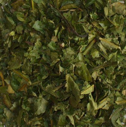 0712コーヒーの葉の茶1.JPG