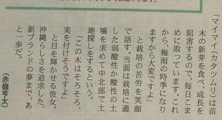2007年4月12日レキオ3面ー記事3.jpg