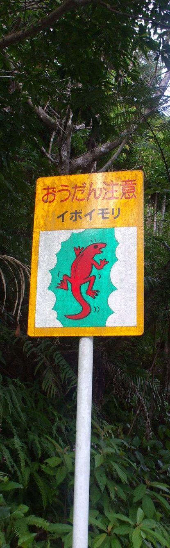 イボイモリの標識.JPG