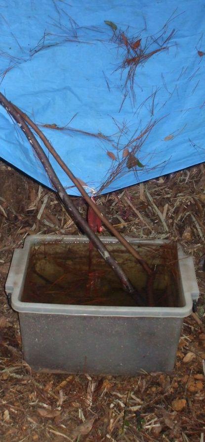 簡易雨水貯水システム0910.JPG