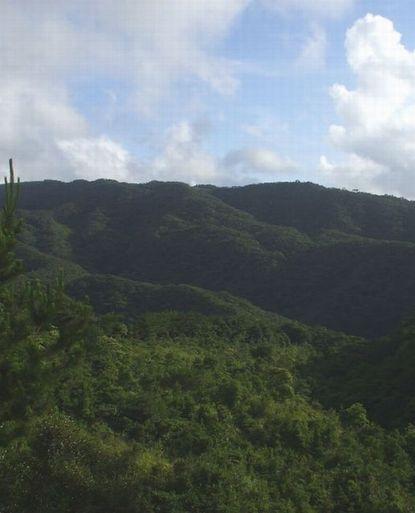 南側の与那覇岳方面.JPG