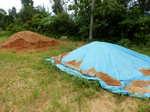 豚糞堆肥と国頭マージ20140707.JPG