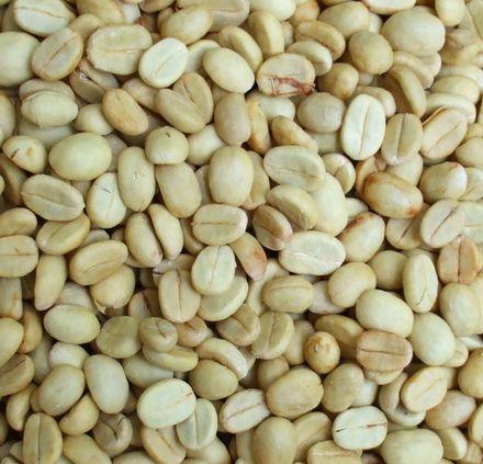 今年収穫した新豆.JPG