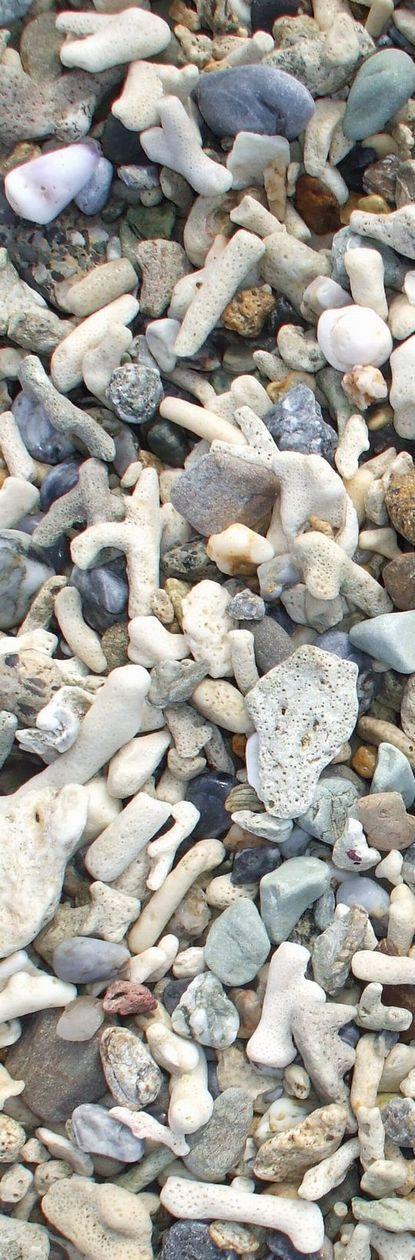 佐手あたりの海岸の石.JPG